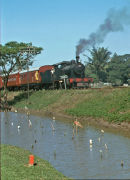 No 240 crossing the golf course near Colombo heading to Homagama. No 240 is  a 4-6-0 built by Hunslet in 1927.
