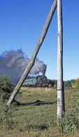 SU252-91 near Lysanovka.