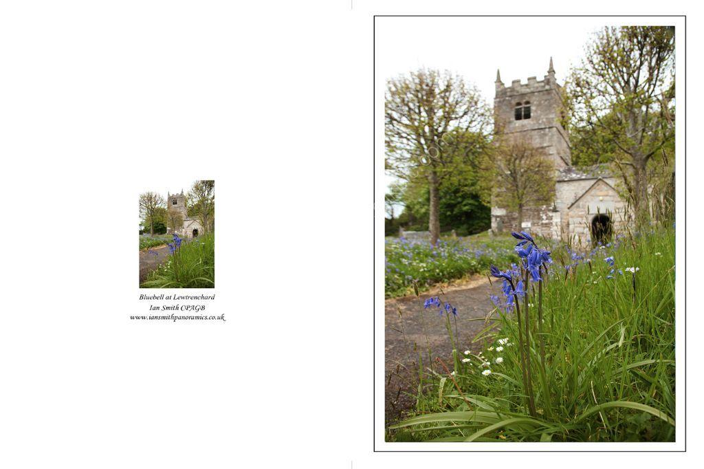 St Peters Church Lewtrenchard Devon 2