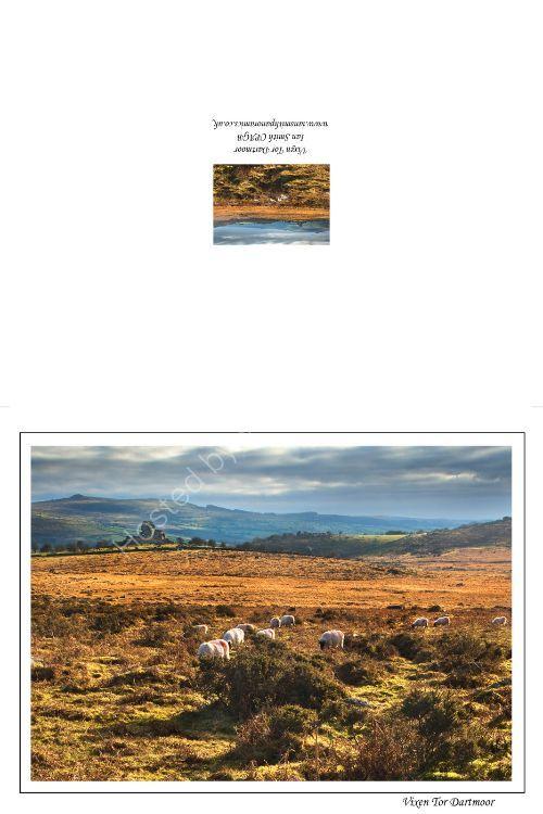 Vixen Tor Dartmoor Devon