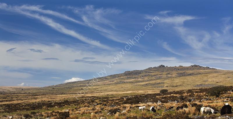 Great Mis Tor Dartmoor Devon