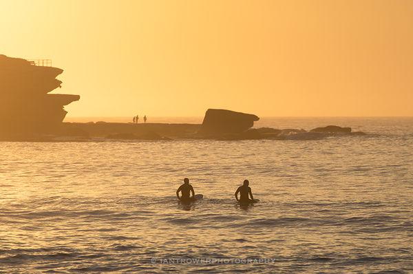 Surfers at sunrise, Bondi Beach, Sydney, Australia