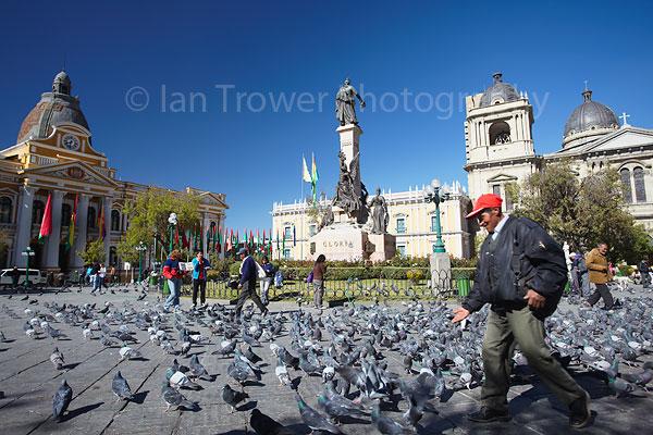 Pigeons in Plaza Pedro Murillo, La Paz