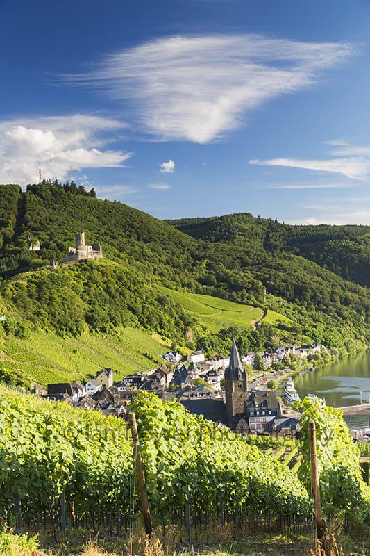 Vineyards at Bernkastel-Kues