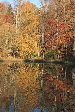 Autumn reflections Wallington Hall