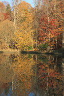 Autumn reflections Wallington Hall