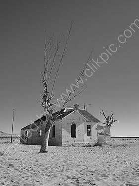 HC. Desolation