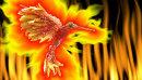 HC. Firebird