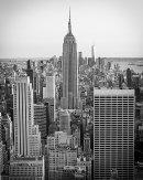 HC Margaret Daley New York Skyline