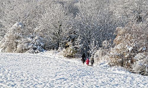 HC. Winter wonderland