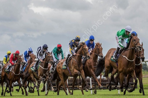 Northumberland Plate day