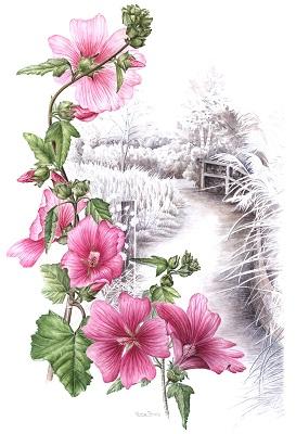 Lavateria Garden Painting