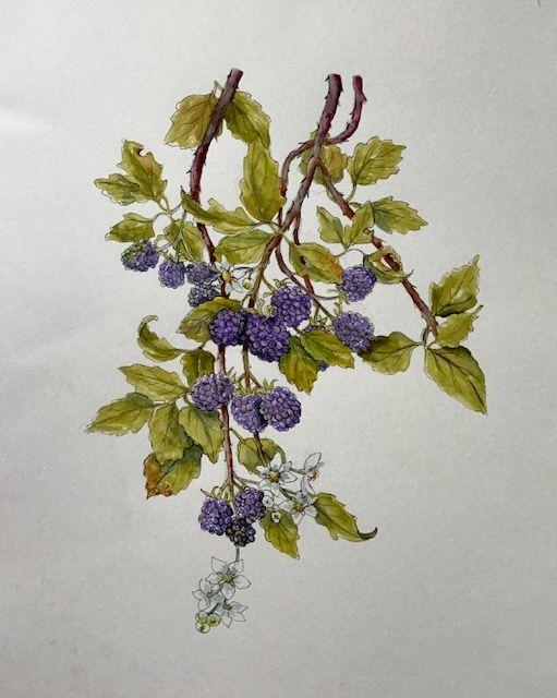 Berries Arteza Pens