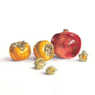 Pomegranet and Sharon Fruit