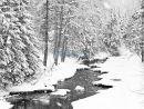 P1010713 Snowy stream