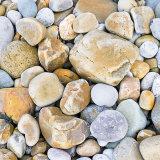 P1020372 Beach pebbles