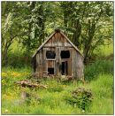 Spring Sheds Almondbury
