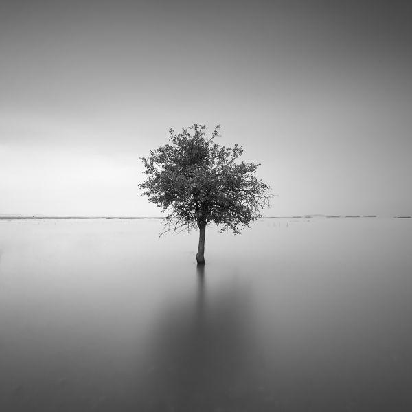 Alone #7