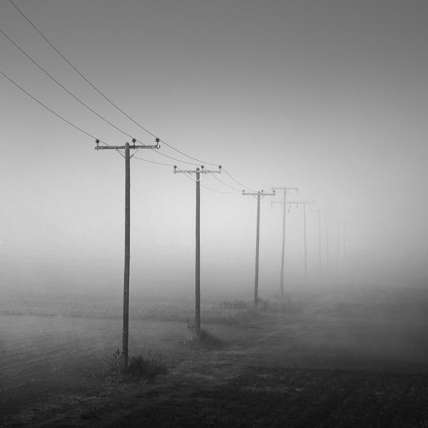 Misty fields #2