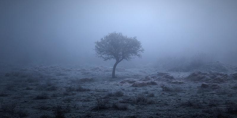 Frozen silence #3