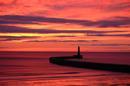 Pre-Dawn Sky 1