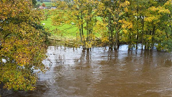 River Bursts it's Banks