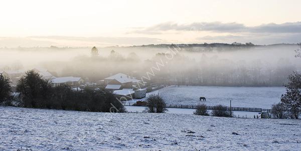 Misty Winter Fields