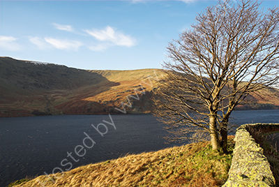 Sunny Morning at Haweswater