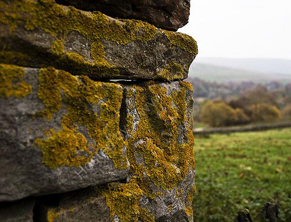 Drystone Shelter