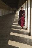 Sombre monk