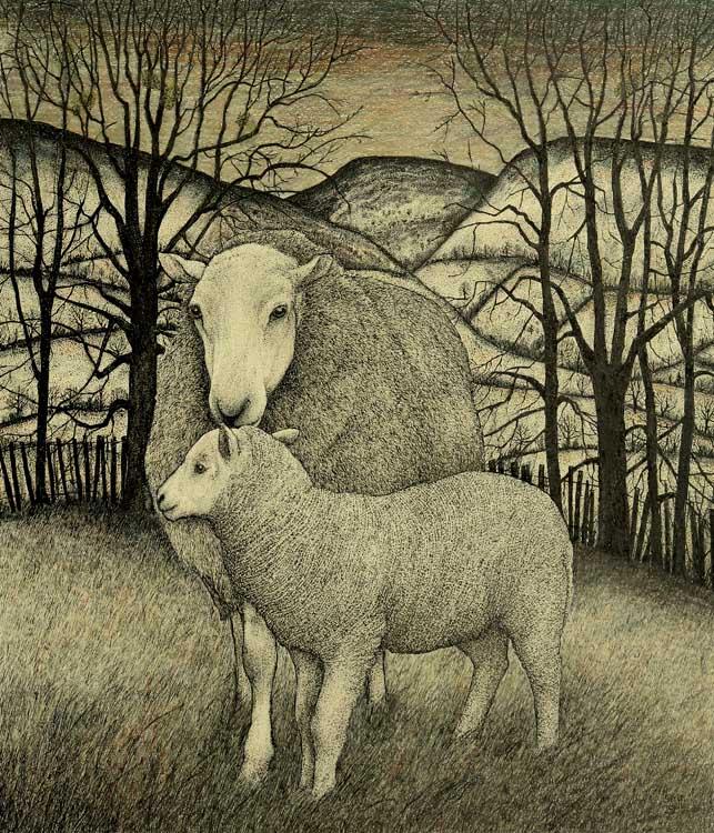 Wye Valley Ewe and Lamb