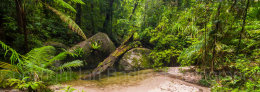 Australia, Queensland, Mossman Gorge, Daintree National Park