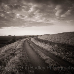 Country Lane at dawn, Dorset, England