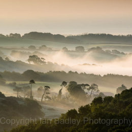Misty dawn over Knighton Down, Isle of Wight, England