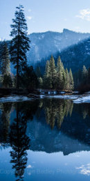Sun shafts of light on trees and Merced River at dawn, Yosemite National Park, California, USA