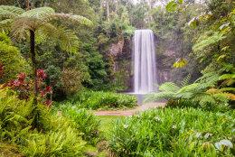 Australia, Queensland, Millaa Millaa Falls