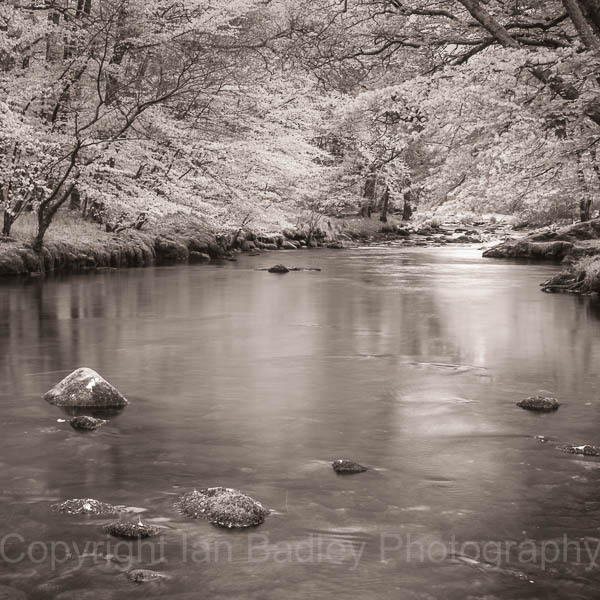 River dart in monochrome, Devon, England