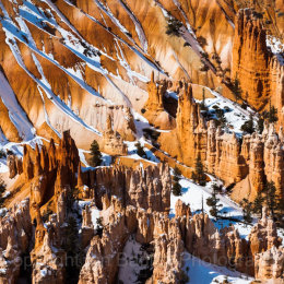 Snow covered hoo-doos in Bryce Canyon National Park, Utah, USA