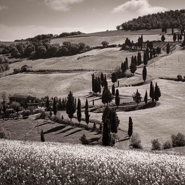 Zig Zag road in Tuscany, Italy
