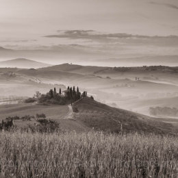 Belveder, UNESCO Val d'Orcia, Tuscany, Italy
