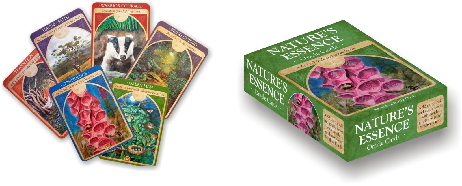 Natures Essence Cards and Box