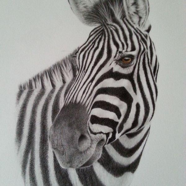 elegant in stripes