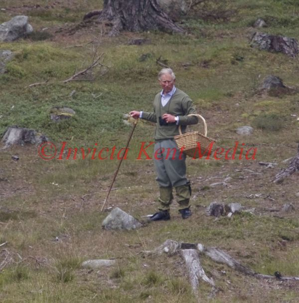 PICS SHOW;Prince Charles mushroom picking near loch muick Saturday afternoon prefering this ,rather than joining the rest of the royals on a grouse shoot on he moors near Corgarf Castle