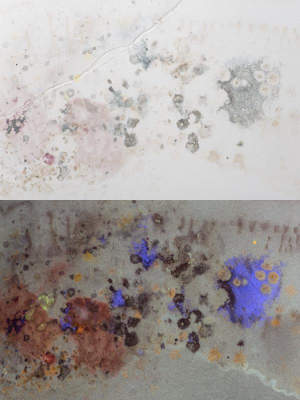 Mould on foam board as a result of water damage.