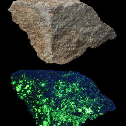 Willemite and Calcite, in visible light, and fluorescing in UV