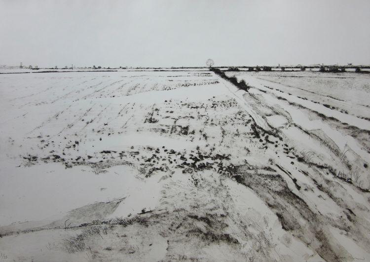 Fen Edge in Winter