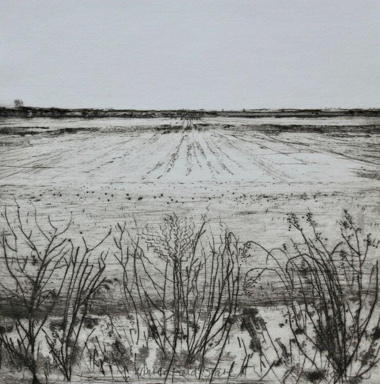 Winter Field State II