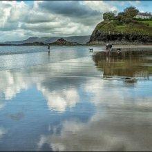 19 Carol Walker Reflections on the Beach M1