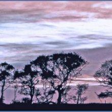20 AngelaMulligan Evening Skyline M1