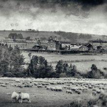 20 Fred Dawson Dartmoor Prison M1